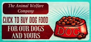 The Animal Welfare Company